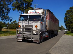 photo by secret squirrel (secret squirrel6) Tags: craigjohnsontruckphotos kenworth cabover coe longwarry vaughenstransport classic kw trucking