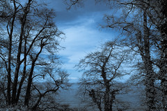 Hohwacht-Ostsee