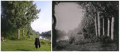Maly Dunaj (Juro Kovacik) Tags: wet plate tintype