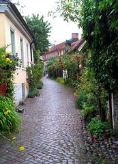 Fiskargrnd i Visby (Per Ola Wiberg ~ powi) Tags: flowers sweden schweden july charm cobblestones sverige juli gotland blommor visby 2013 gatsten saariysqualitypictures rosornasgrnd