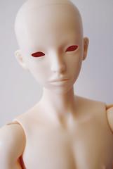 LR Tenten + 5Stardoll body (♥ Jin) Tags: body match bjd resin hybrid tenten littlerebel 5stardoll