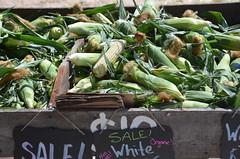 Humboldt County Fruitstand (Rob.Bertholf) Tags: vegetables humboldt farmers market vegetable fruitstand humboldtcounty hydesville bestfarmersmarket