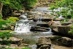 DSC_2762 (J.H.S. pics.) Tags: ohio woodland river woods valley berea rockyriver metropark