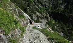 Vallon de Van (bulbocode909) Tags: valais suisse vallondevan montagnes chemins nature arbres vert