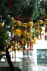 DSCF3317 (Chee Kweng Teoh) Tags: nantou sun moon lake wen wu temple