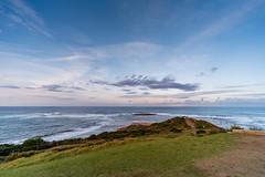 M1140402.jpg (meerecinaus) Tags: longreef beach collaroy newsouthwales australia au