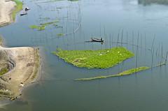 Beautiful river! (ashik mahmud 1847) Tags: green water river boat lifestyle nikkor bangladesh d5100