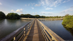 20160730 VirbXE Delray Beach 20 (James Scott S) Tags: delraybeach florida unitedstates us garmin virb xe wakodahatchee wetlands everglades landscape leading lines
