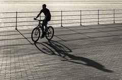 Evening shadow (Alicia Clerencia) Tags: blackwhite gente people urbana street verano summer sombra shadow bike bicicleta paseo path