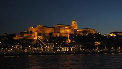 Buda Vr este (brauny) Tags: budapest magyarorszg hungary capital night noflash duna dabube budaivr budacastle