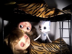Part 1: Blythe-a-Day: Zoo: Nikki-cat's Debut...
