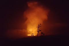 cauldron (BarryFackler) Tags: kilauea hawaiivolcanoesnationalpark halemaumau caldera crater lava magma glow vulcanism nature geology outdoor nps park nationalparkservice 2016 hawaii sandwichislands polynesia hawaiicounty bigisland hawaiiisland tropical ecology hawaiianislands night pele tree silhouette ohia plume dark jaggermuseum overlook