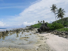 Beach with pinnacles, Nauru.