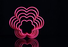 Flowers (Karen_Chappell) Tags: pink flower shape black reflection stilllife pattern abstract curves colourful