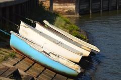 High n dry (jenniemay2011) Tags: nikond5100 rowingboat heybridgebasin river jenniemay
