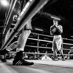 EH2A3284 (Pat Meagher) Tags: blackandwhite bw documentary boxing sportphotography belfastdockers patmeagher paddym01 reptonboys