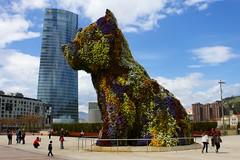 Bilbaow-wow (starsurvivor) Tags: travel spain bilbao guggenheim euskalherria euskadi paisvasco interno7