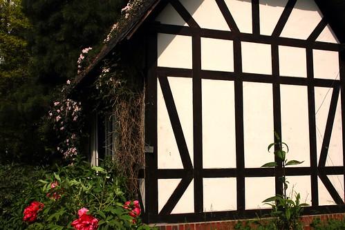 "Alter Botanischer Garten Kiel (3) • <a style=""font-size:0.8em;"" href=""http://www.flickr.com/photos/69570948@N04/18235402442/"" target=""_blank"">View on Flickr</a>"