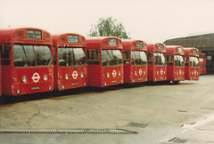 SMS 168,273,295,284,298,339 and 308. Edgware garage 1/6/80.[ EGN 168/273/295/284/298/339/308J] (busmothy) Tags: 1980s sms edgware londontransport lte aecswift