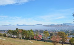 Mist rising from the southern suburbs in Canberra (AndyBrii) Tags: kangaroo canberra act banks conder