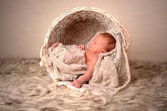 NewBorn en gezinsfotografie van PaulOudFotografie (3)