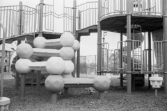 Playgrounds (B&W) Part 3 [2 of 6] (jwbeatty) Tags: 35mm analog bw barrington blackwhite blackandwhite canon canonetql17giii christmastrees film filmisnotdead fog illinois ishootfilm lakezurich langendorfpark parkinglot playground project365 rangfinder treelot