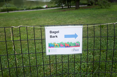 bagel bark, cherry hill, central park (Charley Lhasa) Tags: nyc newyorkcity ny newyork sign fence pattern iso400 centralpark manhattan noflash gothamist uncropped lightroom cherryhill nycparks aperturepriority dng flagged grii centralparkpaws 2stars adobelightroom 0ev 183mm ricohgrii secatf28 bagelbark 28mm35mmequivalent tumblr160709 adobelightroomcc20156 lightroomcc20156 r008088 taken160709091153 uploaded160709181711 httpstmblrcozpjiby293znnp