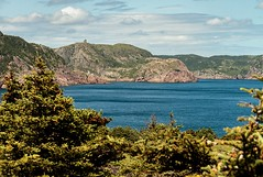 Signal Hill View (Karen_Chappell) Tags: eastcoast eastcoasttrail newfoundland nfld canada ocean sea seascape landscape scenery scenic atlantic atlanticcanada stjohns freshwaterbay trees green blue hills coast coastline shore avalonpeninsula