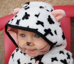 Maelys (Doonia31) Tags: bb fille dguisement chat oreilles noir blanc visage portrait moustaches maquillage regard sourire enfant
