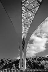 Ponte da Arrabida (_Rjc9666_) Tags: arquitectura bridge nikond5100 ponte pontedeaarrabida portugal street tokina1224dx2 urbanphotography ruijorge9666 sopedrodaafurada portodistrict pt bw 1474 802