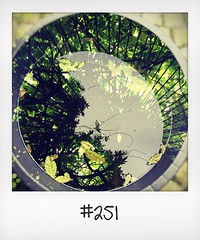 """#DailyPolaroid of 5-6-16 #251 • <a style=""""font-size:0.8em;"""" href=""""http://www.flickr.com/photos/47939785@N05/28267224092/"""" target=""""_blank"""">View on Flickr</a>"""