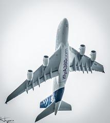 Airbus A380 (Wayne Cappleman (Haywain Photography)) Tags: garden photography back aircraft wayne hampshire airshow airbus fia 2016 haywain farmborough cappleman fia16