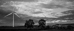 Beautiful or ugly? (Matt-Bruce) Tags: blackandwhite monochrome landscape energy electricity windturbine