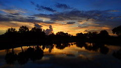 Sunset July 16th 2016 (Jim Mullhaupt) Tags: sunset sundown dusk sun evening endofday sky clouds color red gold orange pink yellow blue tree palm silhouette weather tropical exotic wallpaper landscape nikon coolpix p900 pond lake water reflection bradenton florida jimmullhaupt cloudsstormssunsetssunrises photo flickr geographic picture pictures camera snapshot photography nikoncoolpixp900 nikonp900 coolpixp900