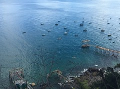Ocean Blue. (malucardoso) Tags: sunrise sea azul sol mar town clouds morning green sun beach tallship ship sky ocean blue