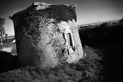 where there is a hill, there is a way (journo_bouy) Tags: morello tower cannon rye old nepoleon overgrown nature abandoned war 100v 200v