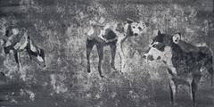 von Dingen die mit ver beginnen (Christian Haupt) Tags: kunst art acryl malerei monochrome serigrafie stencil sprayart painting