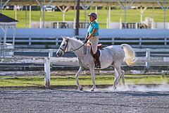 IMG_2561 (SJH Foto) Tags: horse show hunter jumper class girls teenage teen riders action shot tweens