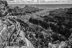 The Grand View (Marcela McGreal) Tags: grandcanyon arizona blackandwhite bnw blackwhite bw blancoynegro blanconegro bn byn blanco negro black white noiretblanc noirblanc noir blanc biancoenero bianco nero bianconero pretobranco pretoebranco preto branco schwarzundweis schwarz weis landscape brightangelpoint bright angel point trail