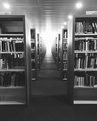 entre libros,ideas (lucia_barra) Tags: comunicacinaudiovisual periodismo carlosiii ideas libros universidad madrid biblioteca