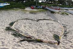 IMG_5303 (C-N, Chen) Tags: lanikaibeach  honolulu  hawaii