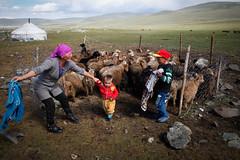 Pastoral life (Lil [Kristen Elsby]) Tags: asia bayanulgii canon5dmarkii hag mongolia westmongolia travelphotography kazakh mongolian nomad ger editorial gercamp pastoral mttsengelkhairkhan topv1111 topf25