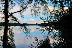 Syvapaja lake (Vitale Daniele) Tags: finlandia nature visitfinland finland lake region lakeregionfinland trees water