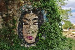IMG_9087 Petite Ceinture Paris 15 (meuh1246) Tags: streetart paris petiteceinture paris15