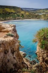 Ghajn Tuffieha Bay (albisserl) Tags: shrubbery rock malta ghajntuffiehabay mellieha sea mlt