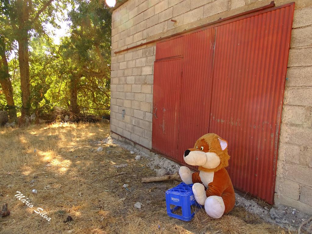 Águas Frias (Chaves) - ... o boneco de peluche guardando o portão ...