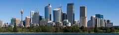 Sydney CBD (Pavel Ryjkov) Tags: city travel panorama building skyline architecture skyscraper canon landscape downtown outdoor sydney australia landmark cbd skylie