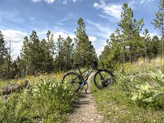 IMG_7861_A (RLEVANS) Tags: hdr helenamontana mtascension entertainmenttrail trekfarley bikehelena