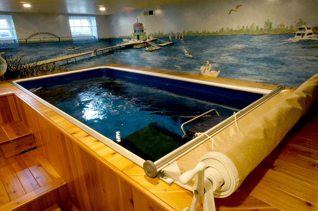 The world 39 s newest photos by endless pools flickr hive mind for Endless pool in basement