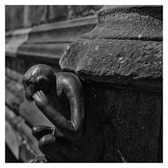 Le Singe du Grand'garde (Gretsch*) Tags: blackwhite belgium belgique mons noirblanc leicasummicron35mmf20asph leicam240